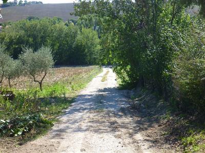 Casa colonica con terreno agricolo chiamacasa agenzia - Casa abusiva su terreno agricolo ...