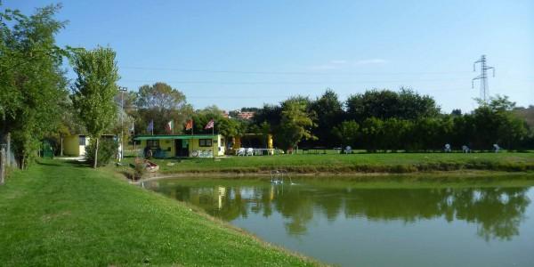 Lago da pesca sportivo chiamacasa agenzia immobiliare di for Pesci laghetto vendita